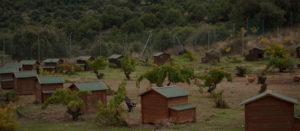 Granja avícola ecológica