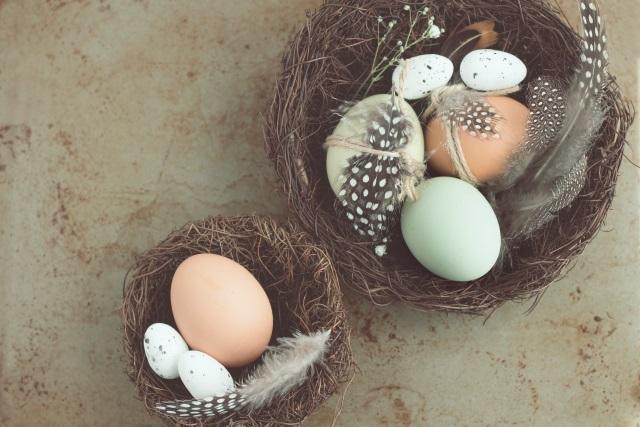 proveedores de huevos