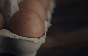 comprar huevos ecologicos madrid