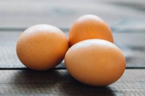 diferencia huevo campero