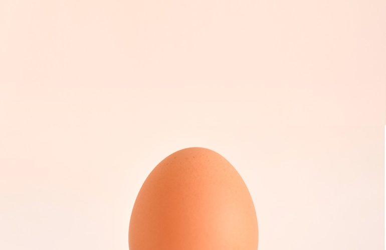comprar huevos ecológicos