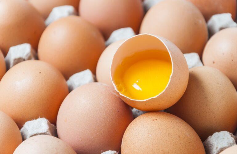 Cuántos huevos pone una gallina al año