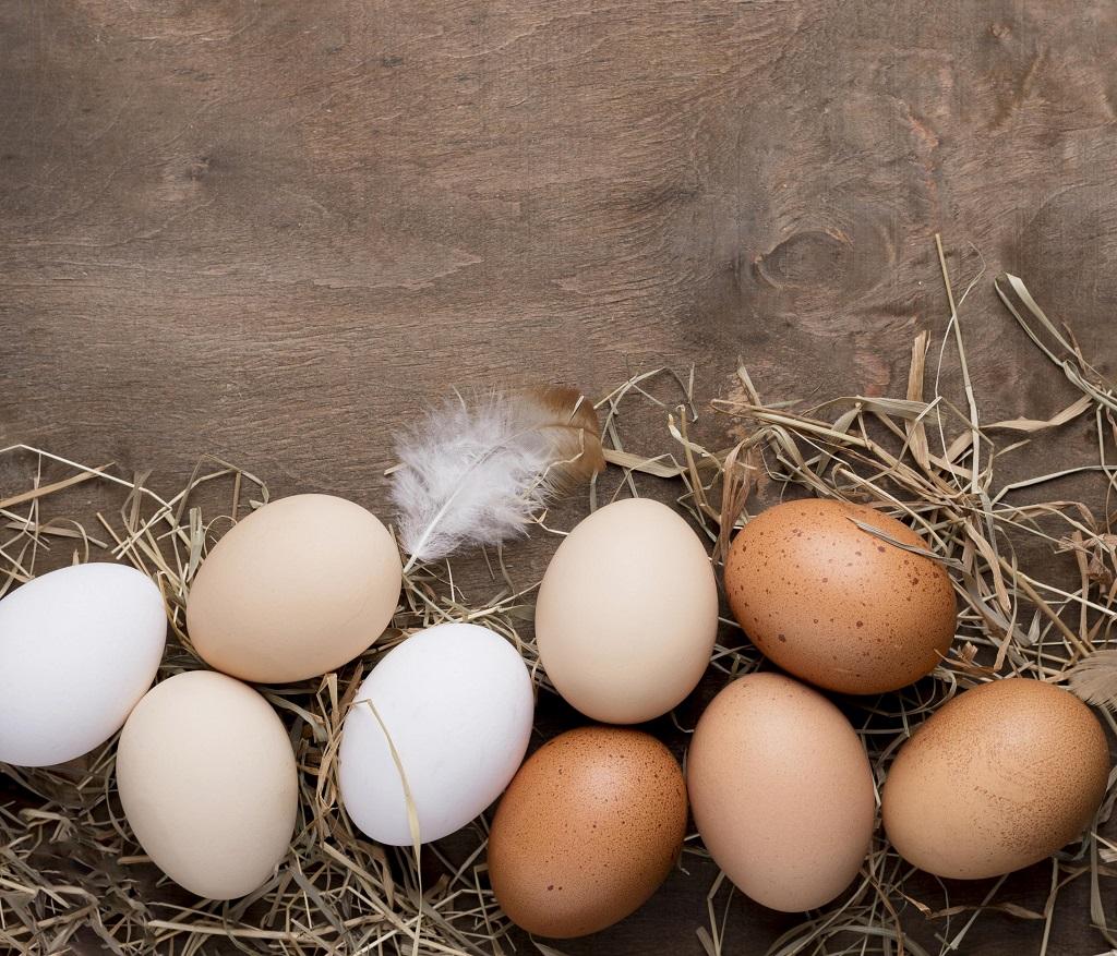 Huevos de diferentes colores