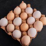consumo de huevos ecológicos en Europa